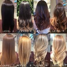 Aveda Color Chart Google Search Aveda Hair Color