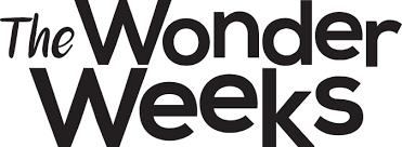 1 Bestseller Baby Development Book The Wonder Weeks
