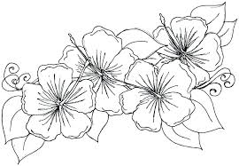 Flower Coloring Pages Free Massiveempireme