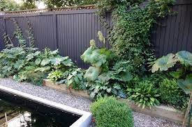 pin on landscaping container gardening