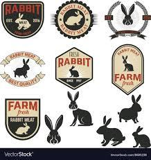 Rabbit Designer Label Set Of Rabbit Meat Labels Badges And Design