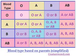 Parent Blood Types Chart Kozen Jasonkellyphoto Co