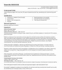 Revenue Agent Sample Resume