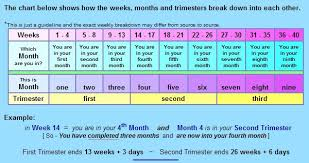 26 Weeks Is How Many Months Chart When Do Trimesters Begin End