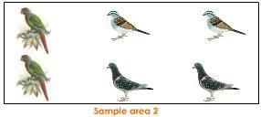 Species Diversity Definition Levels Of Biodiversity Tutorvista Com