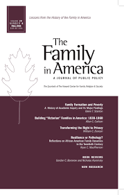 the family in america family formation and poverty