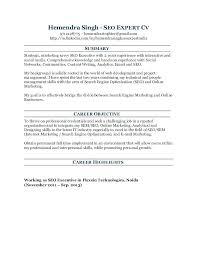 Search Engine Optimization Resume Seo Web Analyst Resume Tinils
