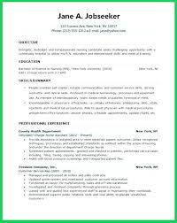 Examples Of Objectives On Resumes Adorable Objective For Student Resume Capetown Traveller