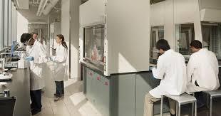 explore all undergraduate majors undergraduate admissions undergraduate majors