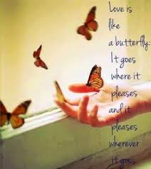 Beautiful Butterfly Quotes Best of Pin By Letitia Makowski On Butterfly Expressions Pinterest