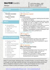 One Page Resume Format Download One Page Resume Sample One Page