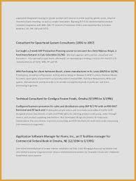 Example Of A Business Resume Cool Sales Objectives For Resumes Unique Business Resume Objective New I