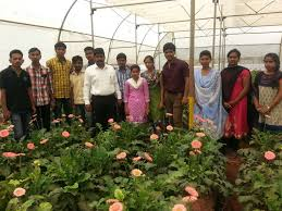 Colleges Of Agriculture Loknete Mohanrao Kadam College Of Agriculture Kadegaon