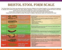 Bristol Stool Form Scale Poster