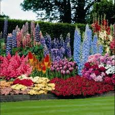 Small Picture Garden fascinating flower garden designs appealing colouful