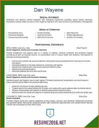 Resume Examples 2016 60 resume format examples 60 Budget Template Letter 37
