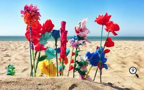 Buy Paper Flower At The Beach You Dont Need Money To Buy Flowers This