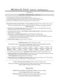 Regional Vp Sales Sample Resume Executive Resume Writing Sales