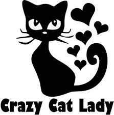 hearts silhouette amazon com crazy cat lady w hearts silhouette cat vinyl car decal