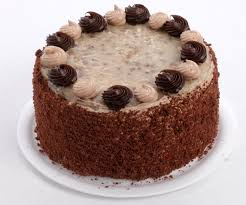 Decorated German Chocolate Cake Everyday Cakes Apple Annies