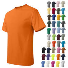 Details About New Hanes Mens Short Sleeve Tees Tops Tagless More Colors T Shirt 5250