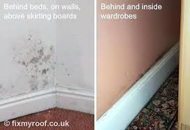 how to remove mold on walls of bathroom how to get rid of mold on the
