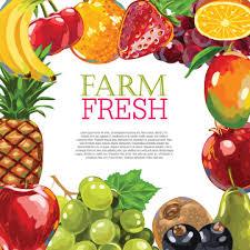fresh fruit background. Perfect Fresh Vector Farm Fresh Fruit Background Design For Fresh Fruit Background T