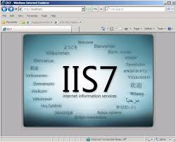 How Do I Generate A Csr On Microsoft Internet Information