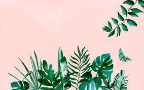 Aesthetic Leaves Laptop Wallpapers ...