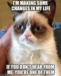 Grumpy Cat on Pinterest | Grumpy Cat Meme, Meme and Grumpy Cat Quotes via Relatably.com