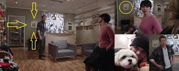 Is this Ava, Jennifer Morrison's dog? - Once Upon A Time Answers - Fanpop