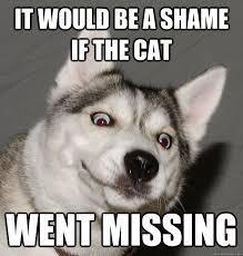 Memes Vault Happy Husky Memes via Relatably.com