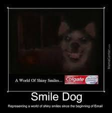 Smile Dog by nmorris75 - Meme Center via Relatably.com