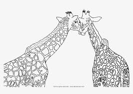 Printable Coloring Pages coloring page giraffe : Cute Giraffe Coloring Sheets | Coloring Online - Coloring Home