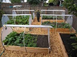 Lawn \u0026 Garden : Simple Vegetable Garden Layouts Ideas Also Fresh ...