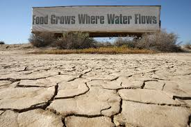 exploring the effects of drought