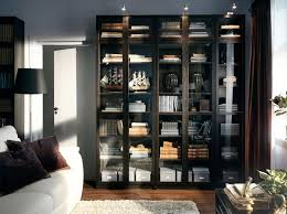 ikea billy lighting. living room furniture sofas coffee tables u0026 inspiration ikea billy bookcases with glass doors ikea lighting b