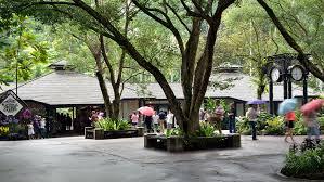 singapore botanic gardens orchid garden entrance