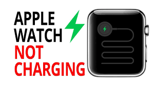 What Is The Green Light On My Apple Watch Solution Apple Watch Will Not Charge Green Snake Of Death