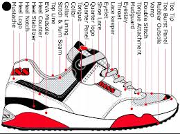 Image result for sneaker anatomy