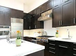 What Color To Paint Kitchen With Dark Cabinets Cool Decoration