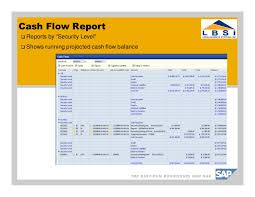 What Is A Cash Flow Report Sap Business One Cash Flow Reporting