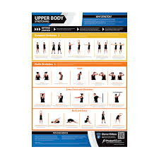 Body Fitness Chart Gym And Fitness Chart Upper Body Stretching L