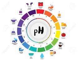 Universal Indicator Ph Color Chart The Ph Scale Universal Indicator Ph Color Chart Diagram Acidic