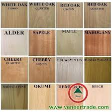 types of timber for furniture. Wood Types Of Timber For Furniture B