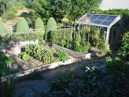 Small Picture Indoor Vegetable Garden Lettuce Garden Ideas Ideas Indoor