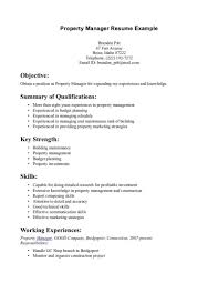 Mesmerizing Good Resume Summary Examples Also Professional How To