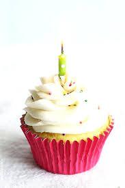 Birthday Cupcakes Birthday Cake Cupcakes Happy Birthday Cupcakes For