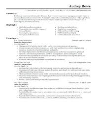 Entry Level Resume Cover Letter Examples Entry Level Police Officer Resume Templates Cover Letter Examples