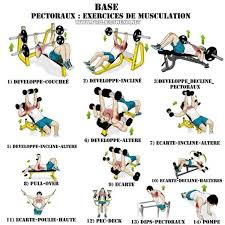 Chest Workout Chart Step By Step 51 Expert Gym Workout Chart For Chest